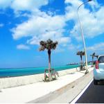 沖縄でレンタカー会社を選ぶ時のポイント! おすすめの会社を紹介